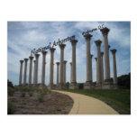 Washington DC nacional del arboreto Tarjetas Postales