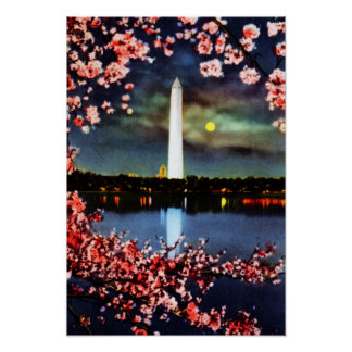 Washington DC Washington Memorial Poster