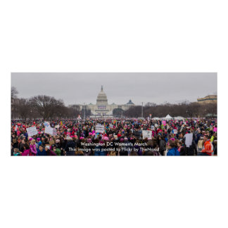 Washington DC Women's March 2017 Poster