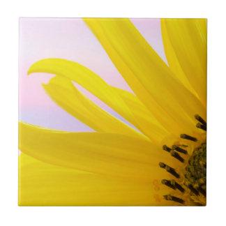 Washington. Detail of sunflower blossom 1 Tile