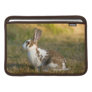Washington, Discovery Park. Adult Rabbit MacBook Sleeves
