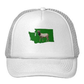 Washington Elk Hat