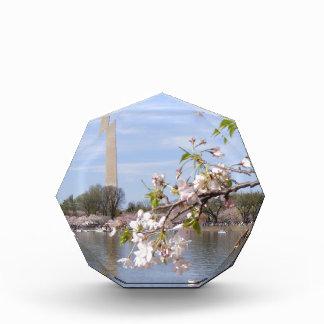 Washington Monument Beautiful Gifts Award