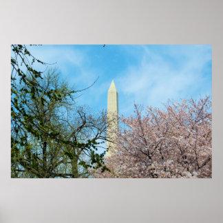 Washington Monument & Cherry Blossom Festival Posters