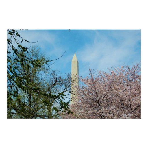 Washington Monument & Cherry Blossom Festival Posters