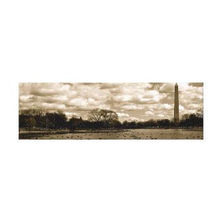Washington Monument  D. C. Canvas Print