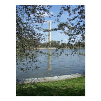Washington Monument in Spring Postcard