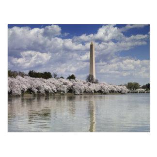 WASHINGTON MONUMENT LITHOGRAPH POSTCARDS