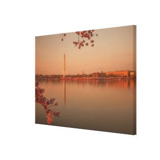 Washington Monument Sakura at sunset. Canvas Print