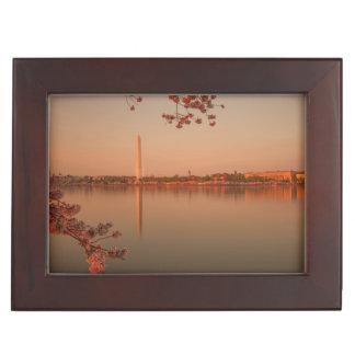 Washington Monument Sakura at sunset. Memory Box
