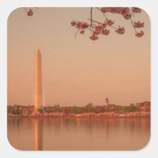 Washington Monument Sakura at sunset Square Sticker