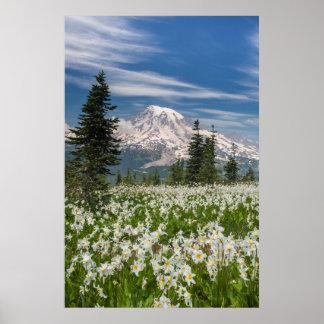 Washington, Mount Rainier National Park 1 Poster