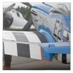 Washington, Olympia, airshow militar. 4 Teja Cerámica