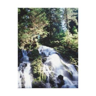 Washington, Olympic National Park, A waterfall Canvas Print