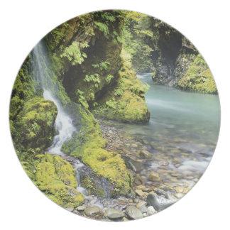 Washington, Olympic National Park, Seasonal Melamine Plate