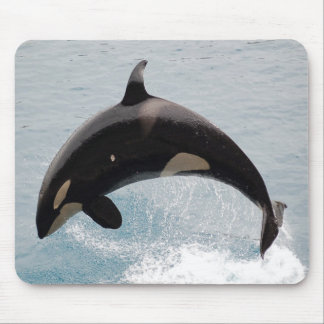 Washington Orca Whale Mouse Pad