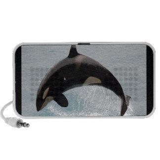Washington Orca Whale Speakers