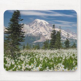 Washington, parque nacional del Monte Rainier 1 Mousepad