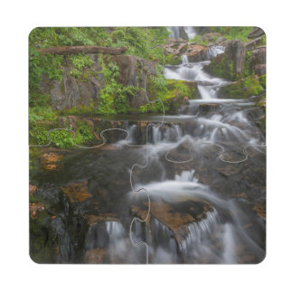 Washington, parque nacional del Monte Rainier 2 Posavasos De Puzzle