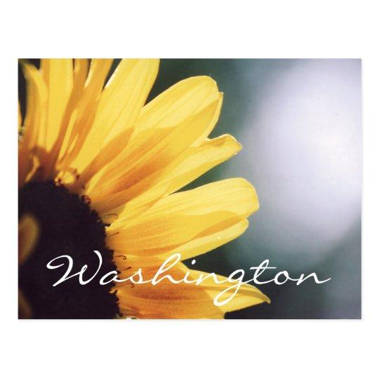 Washington Postcard Sunflower Template