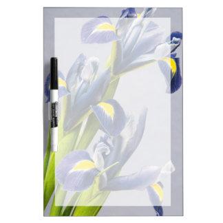 Washington, Redmond, Purple Irises Dry-Erase Board