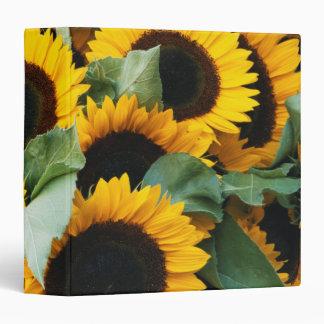 Washington, Seattle, Sunflower for sale pike 3 Ring Binder
