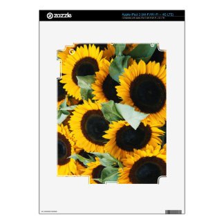 Washington, Seattle, Sunflower for sale pike Decal For iPad 3