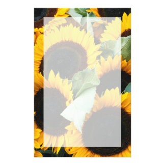 Washington, Seattle, Sunflower for sale pike Stationery