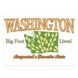 Washington State - Bigfoot Lives! Postcard