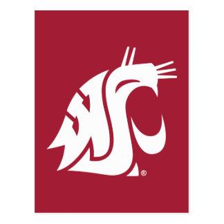 Washington State Cougar Postcard
