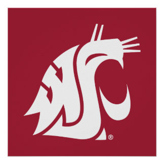 Washington State Cougar Poster
