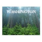 Washington State Post Card
