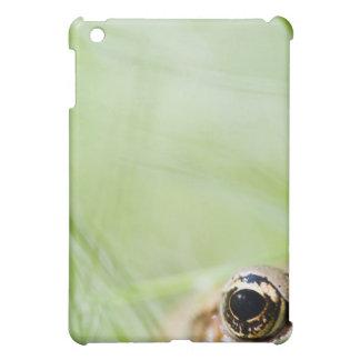 Washington, USA iPad Mini Case