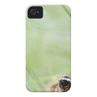 Washington, USA iPhone 4 Case-Mate Case