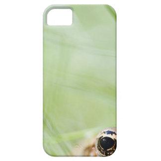 Washington, USA iPhone SE/5/5s Case