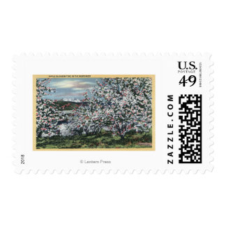Washington - View of Apple Trees in Blossom Postage