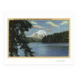Washington - View of Mt. St. Post Card