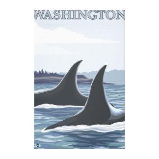 WashingtonOrca Fins Canvas Print