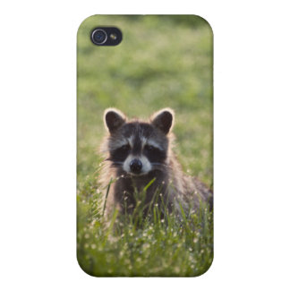 Wasn't Me iPhone 4/4S Cases