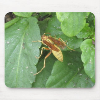 Wasp Mousepads