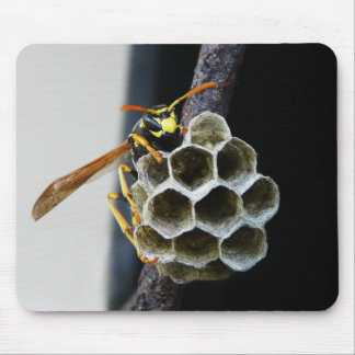 Wasp Nest and Worker Mouse Pad