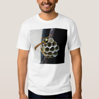Wasp Nest and Worker T-shirts