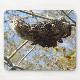 Wasp Nest! Yikes! Mouse Pad