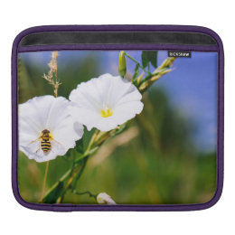 Wasp On A White Flower, Nature Photograph Sleeve For iPads