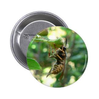 Wasp On Flower Pinback Button