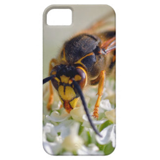 Wasp on white flower iPhone 5 case