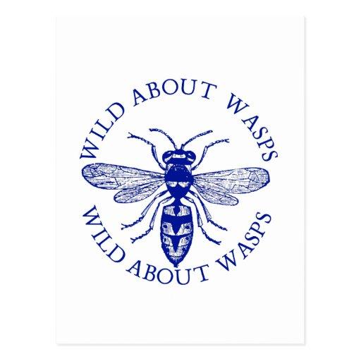 Wasp Postcard