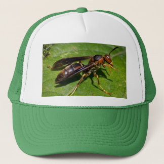 Wasp Trucker Hat