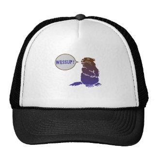 wassup beaver trucker hat
