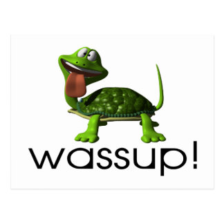 Wassup Turtle Postcard